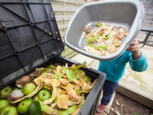 Food Waste: The Growing Financial and Ecological Impact